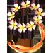 Fée Ailée ou Fée d'automne FlowerFairyHalo.1279